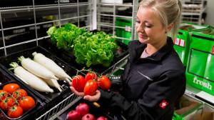 Das Lebensmittel-Sortiment von Amazon Fresh umfasst inzwischen rund 300.000 Artikel. Im Liefergebiet München gehört dazu im O+G-Bereich der lokaltypische Radi ebenso dazu...