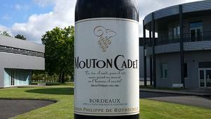 Der Unternehmenssitz ist die kleine Gemeinde Pauillac im Médoc. Dort hat Baron Philippe de Rothschild 1933 sein gleichnamiges Weinimperium gegründet. Mouton Cadet ist der bekannteste Markenwein der Gruppe, der größte Château-Wein ist Mouton Rothschild.