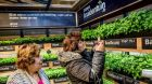 Albert Heijn Pushes XL Concept