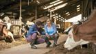 Stall-Check:   Das Arlagarden-Programm ist laut Arla der umfangreichste Qualitätsprozess der gesam